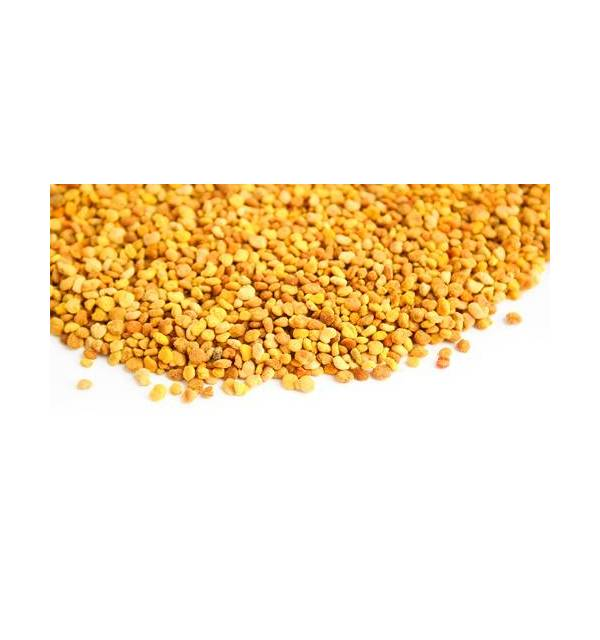 GRAINS DE POLLEN (pot de 110 grs)